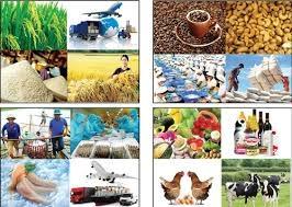 Nông sản xuất siêu gần 2,8 tỷ USD