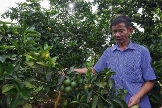 Nhà máy chế biến hoa quả tươi 3.500 tỷ: Ước mơ nhiều năm của nông dân Sơn La đang thành hiện thực