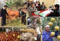 Đẩy mạnh thực hiện các chính sách giảm nghèo bền vững