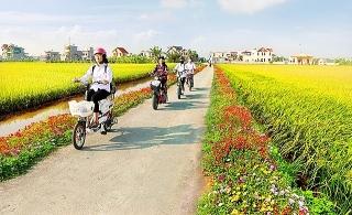 Xây dựng huyện nông thôn mới kiểu mẫu gắn với lợi thế của từng vùng