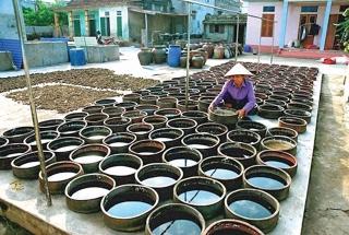 Bảo tồn làng nghề gắn với phát triển du lịch