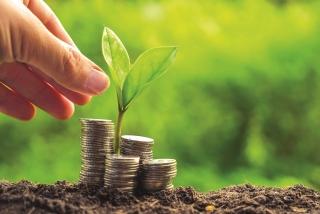 Tín dụngthúc đẩy tăng trưởng xanh