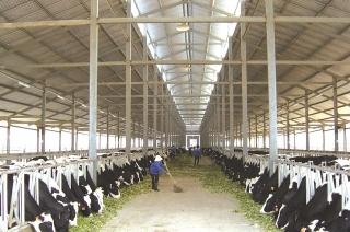 TP. Hồ Chí Minh: Phấn đấu thành trung tâm nông nghiệp chất lượng cao