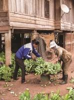 Nỗ lực giúp nông dân vượt khó