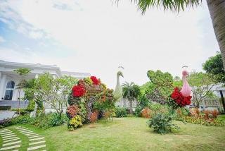 Thưởng thức ngàn hoa khoe sắc trên đồi cao tại lễ hội hoa Hạ Long