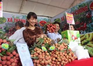 Xúc tiến tiêu thụ vải thiều Thanh Hà và nông sản tiêu biểu tỉnh Hải Dương năm 2021