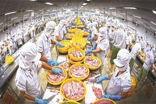Xuất khẩu nông sản chờ cơ hội sau đại dịch