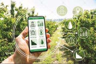Thúc đẩy chuyển đổi số để tái cơ cấu nông nghiệp