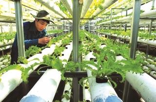 Khẳng định vai trò chủ lực trong đầu tư tam nông