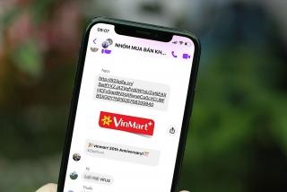 Mạo danh siêu thị đánh cắp thông tin người dùng
