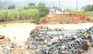 Thiên tai gây thiệt hại nặng cho sản xuất nông nghiệp