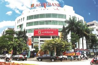 Agribank chi nhánh Lào Cai: 30 năm lớn mạnh cùng nền kinh tế