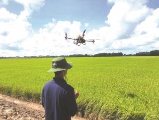 """""""Thang thuốc"""" hiệu quả cho nông nghiệp Việt Nam"""