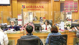 Agribank chi nhánh Yên Bái: Triển khai nhiều giải pháp hỗ trợ khách hàng
