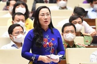 Đại biểu Quốc hội hiến kế để vượt qua đại dịch