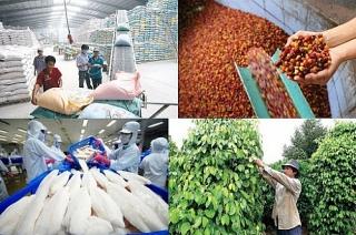 Quý 1/2021:  Xuất khẩu nông, lâm, thủy sản tăng gần 20%