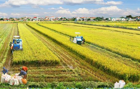 Tiếp tục chương trình xây dựng nông thôn mới và giảm nghèo bền vững